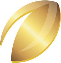 Gold football icon